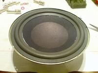 Foam surround (8 inch) for Jamo 707 woofer
