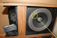 Foamring for BOSE 301 woofer