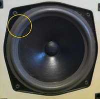 Foam ring (8 inch) for Mission 707 woofer