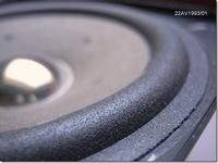 Schaumstoff Sicke für Philips 22 AV1993/01 Tieftoner