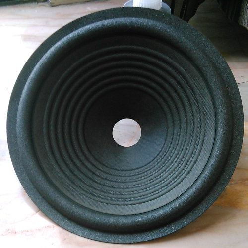 A paper speaker cone, after applying two layers of coating