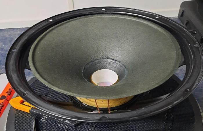 REL Q100E woofer schoongemaakt en met de stofkap verwijderd.
